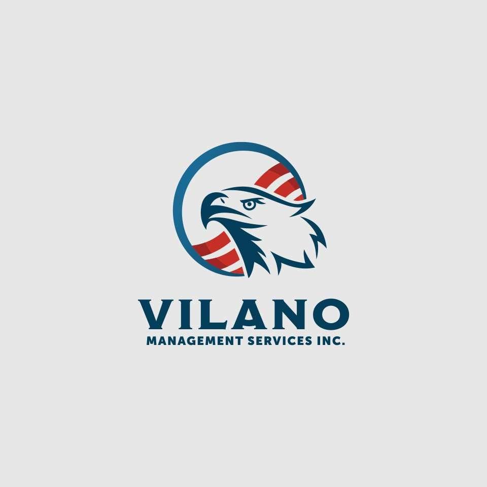 Vilano Management Services logo